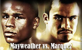 mayweather-vs-marquez-fight