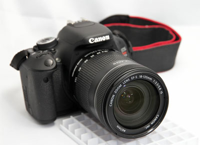 Canon EOS 60D 18-135mm snapshot